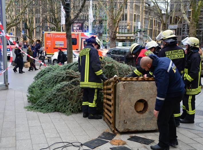 Weihnachtsbaum Service.Prozess Um Weihnachtsbaum