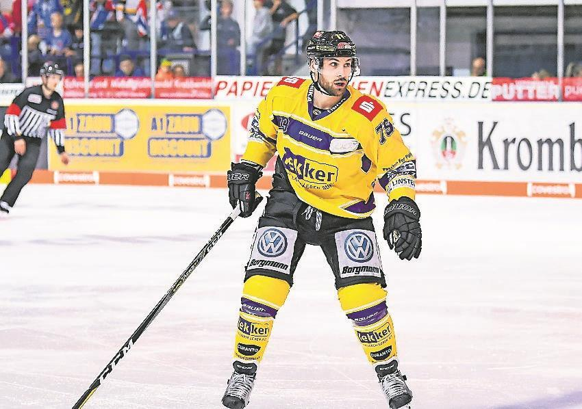 Pinguine Eishockey