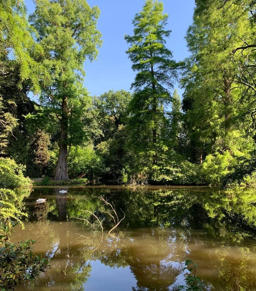 Sommerserie : Ein schöner Tag auf der Insel Hombroich