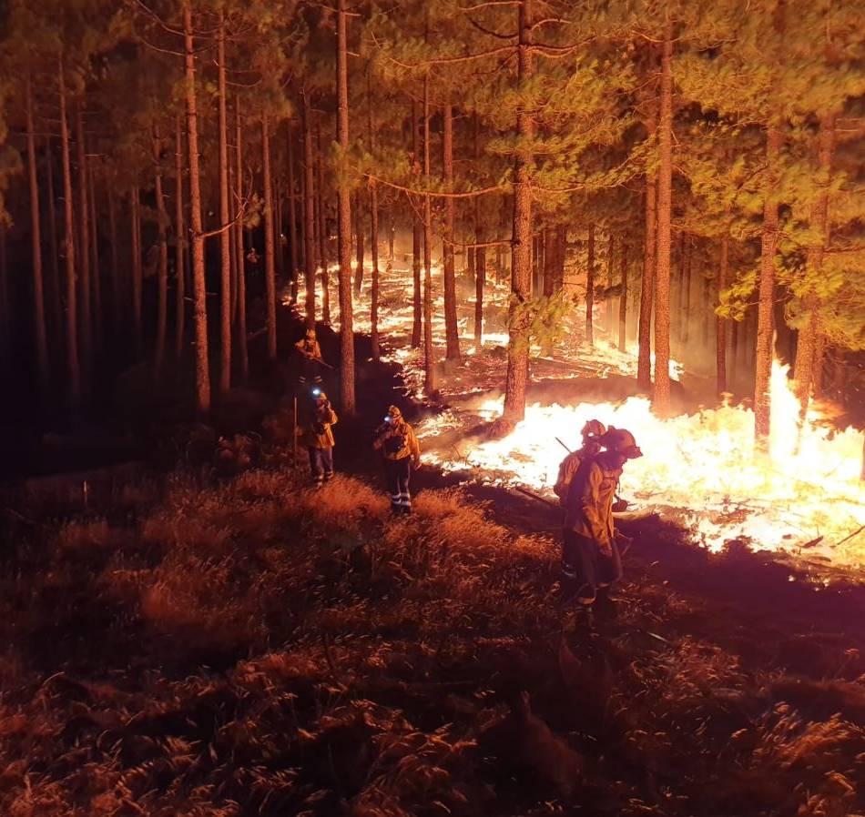 Ein Grevwenbroicher erlebt die Waldbrände auf Gran Canaria: Grevenbroicher trotzt dem Waldbrand