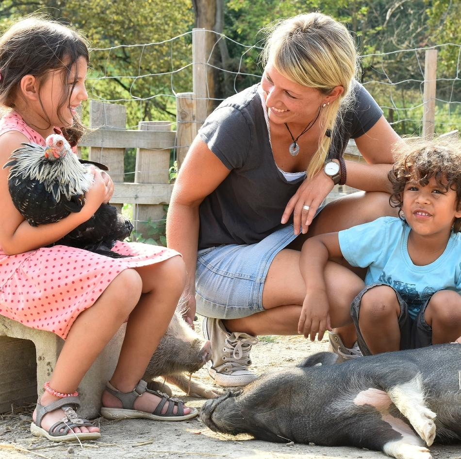 Tiergestützte Arbeit: Besuch von Huhn, Schwein und Ziege