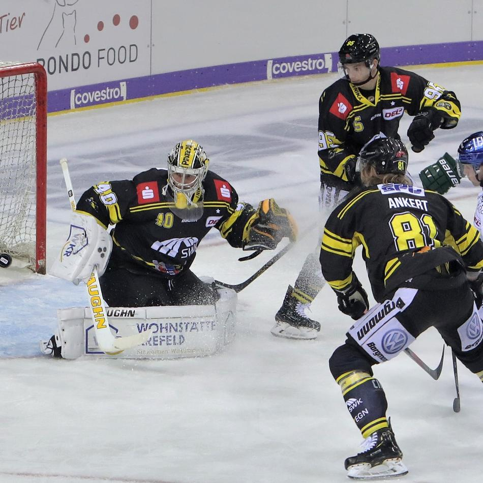 Eishockey: Fahrige Pinguine lassen Punkte liegen