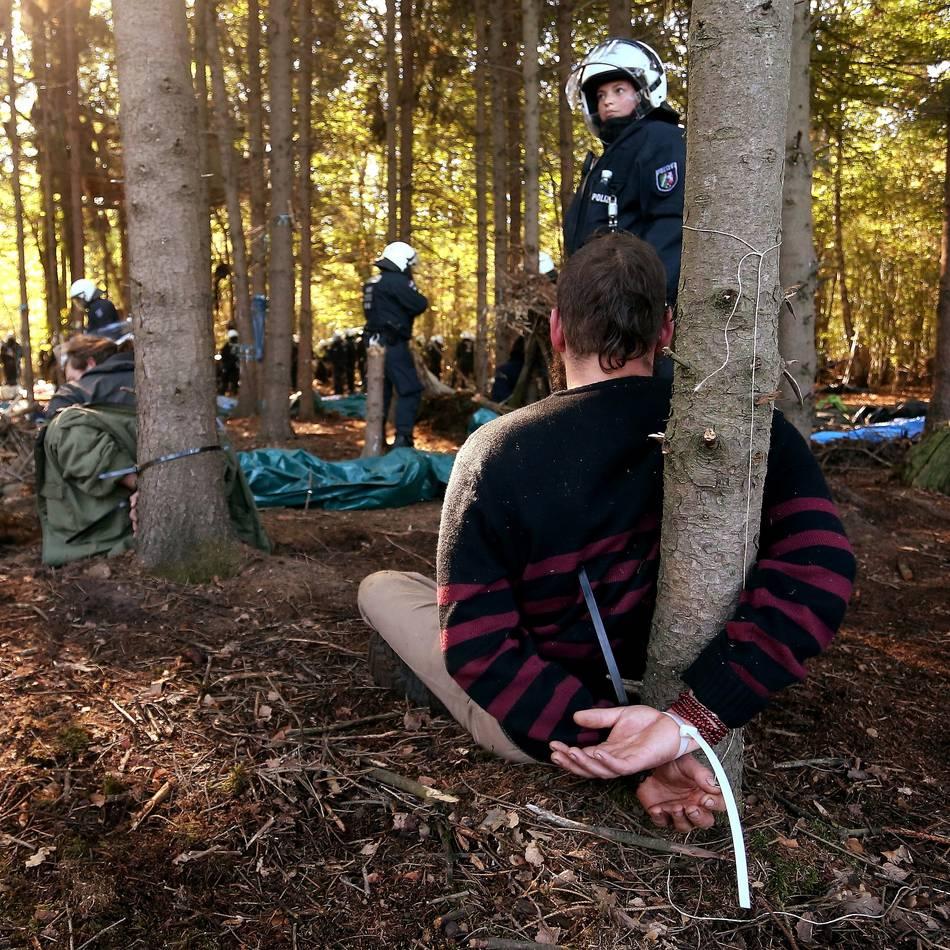 Per Eilantrag: SPDfordert vollständige Offenlegung der Akten zur Räumung im Hambacher Forst