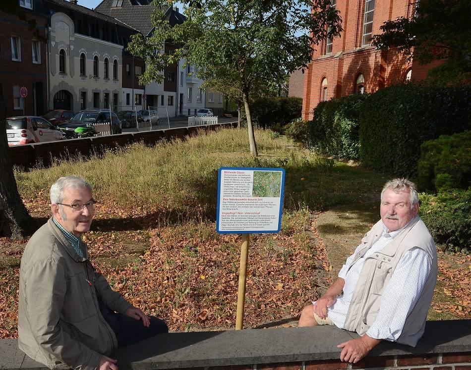 Ökumenische Umweltgruppe der Kempener Kirchengemeinden: Ein Stück Rasen wird zur Blühwiese