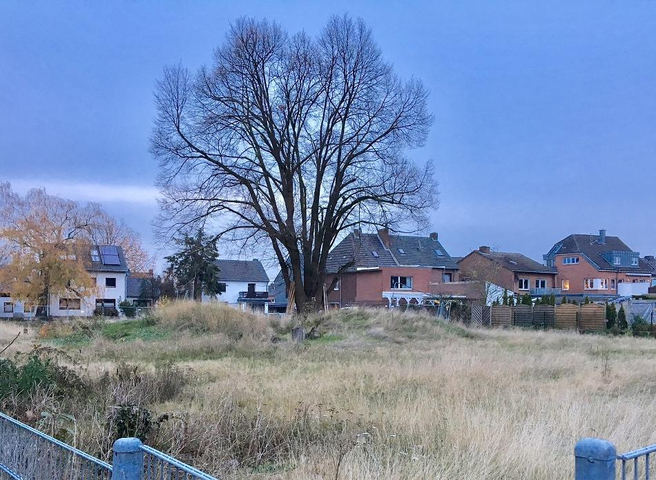 Neersen: Seniorenheim: Zukunft des Projektes ist unklar