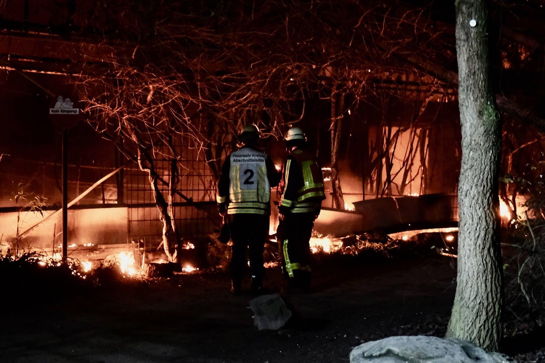 brand krefelder affenhaus