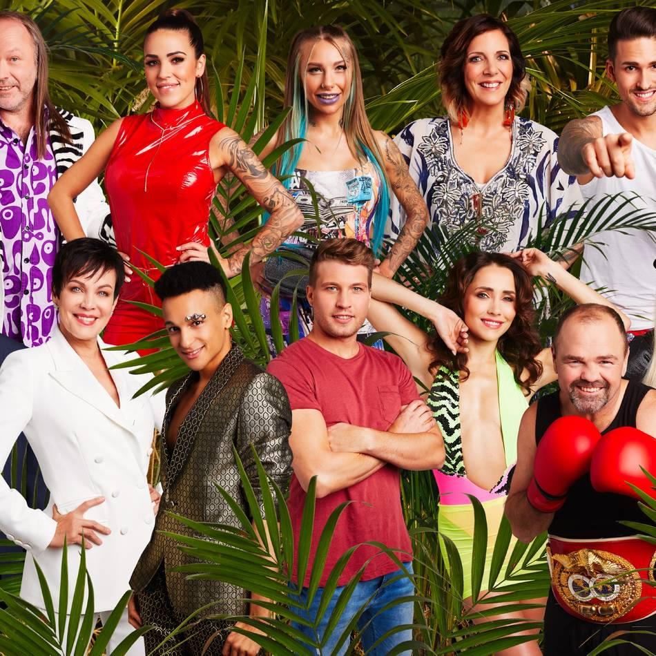 17. Staffel: Dschungelcamp-Finale bescherte RTL Marktanteil von 30 Prozent