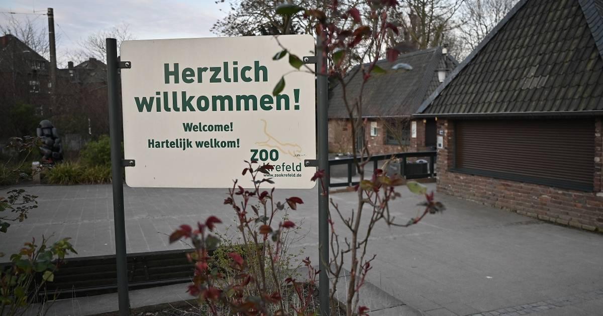 Zoo Krefeld Corona