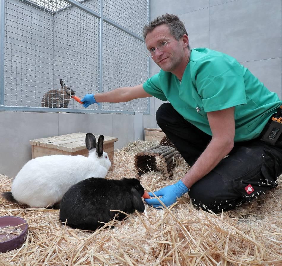 Tiere: Tierheim hält Plätze frei für Tiere von erkrankten Haltern