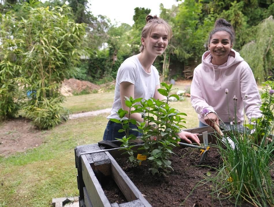 Haan: Gartenprojekt ersetzt Praktikum
