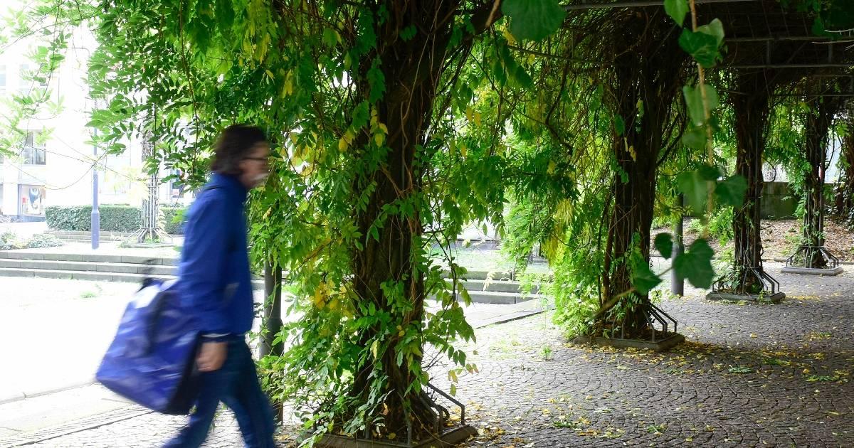 Abriss der Pergola - Angsträume sollen verschwinden