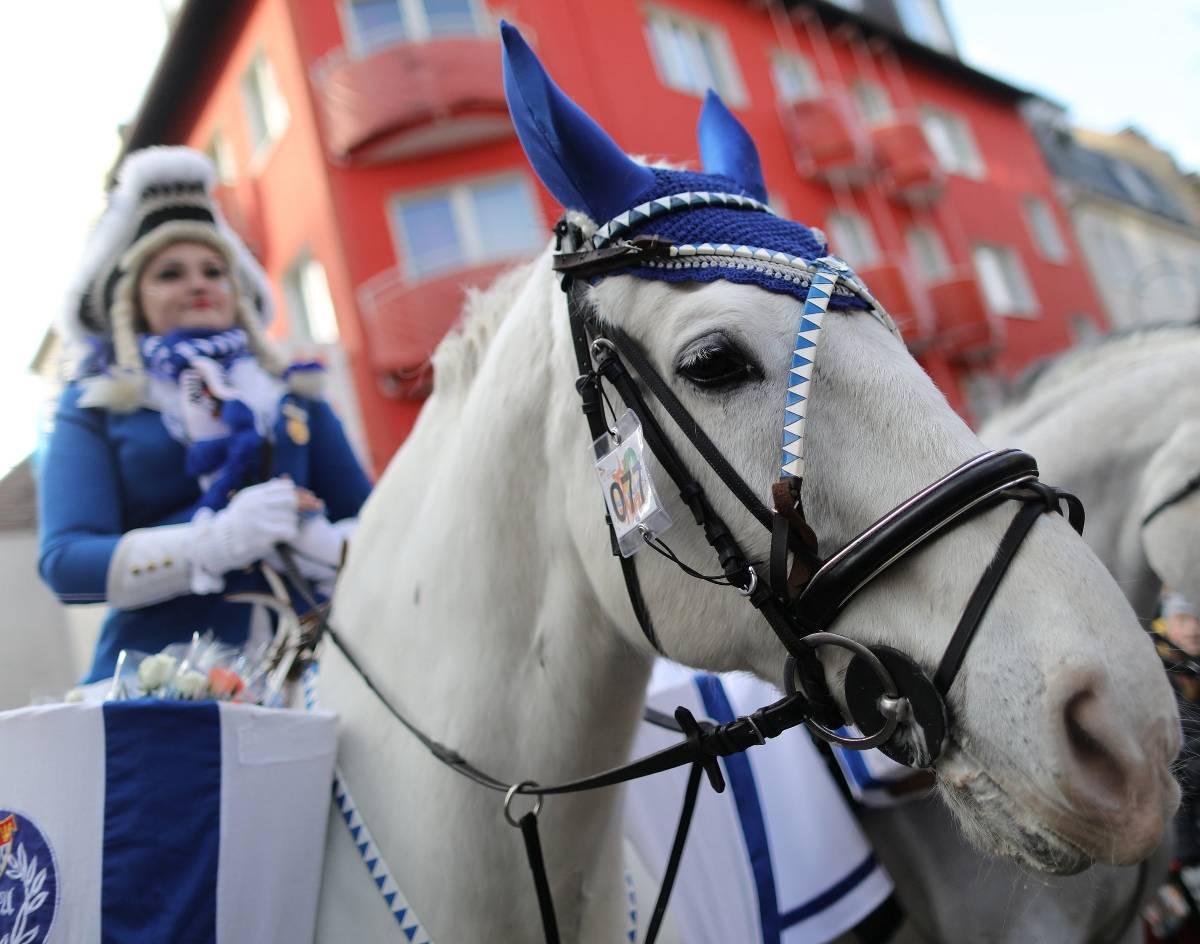 Karnevalsgesellschaften Köln